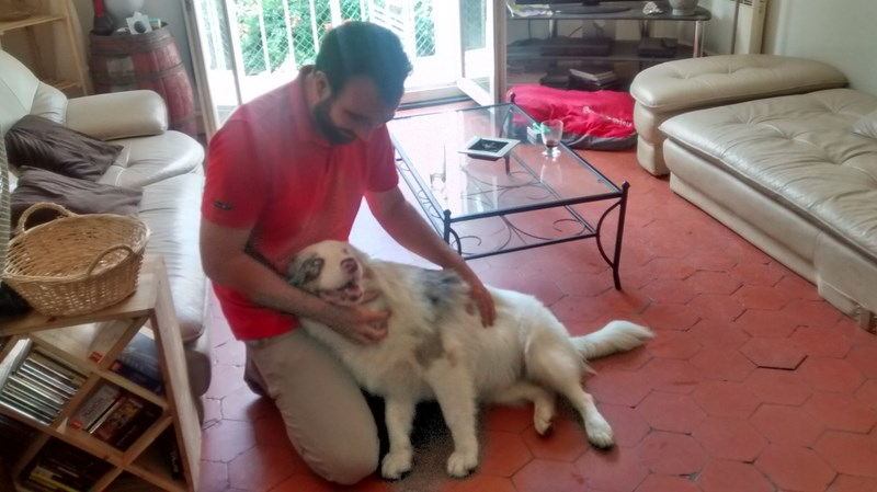 DogEcole_sept2015_04