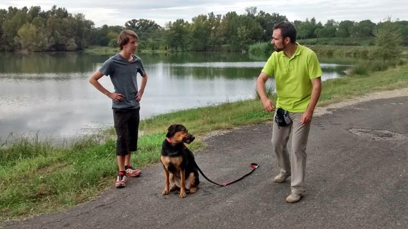 Qu'est ce qu'un éducateur canin ? | Dog Ecole