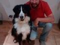DogEcole_0104